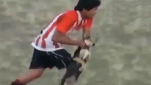Roja directa: futbolista argentino agrede a un perro inofensivo en pleno partido