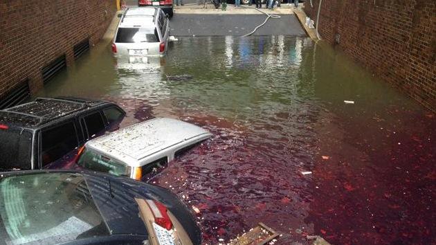 Tras Sandy, una marea de excrementos inundó Nueva York