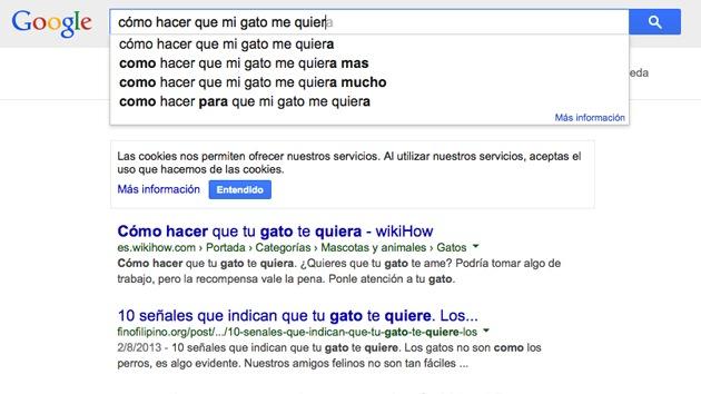 Las búsquedas más absurdas en Google: ¿Cómo hacer que mi gato me quiera?