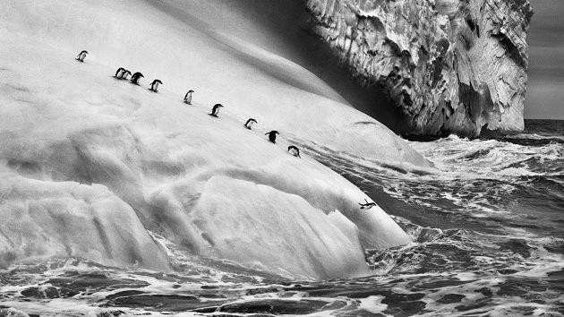 'Génesis': Fotos impresionantes de lugares vírgenes que revelan otra mirada al mundo