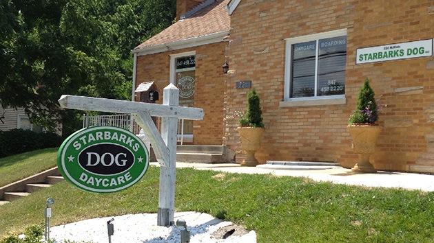 Starbucks 'marca' su territorio y 'ladra' al refugio canino que plagió su logo