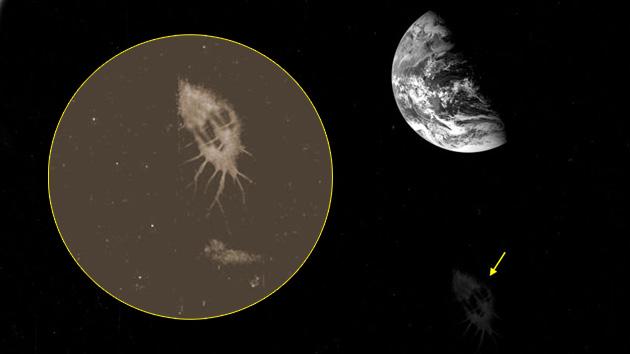 Imagen: revelan 'nubes' enigmáticas en fotos de la Tierra 5bfa4107bdb1108c10a1f008f87ccda5_article