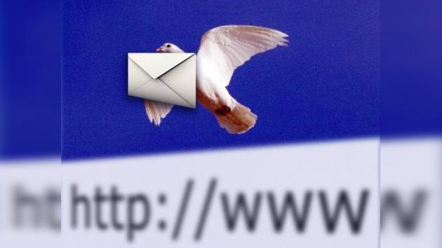Las palomas resultaron ser más rápidas que Internet