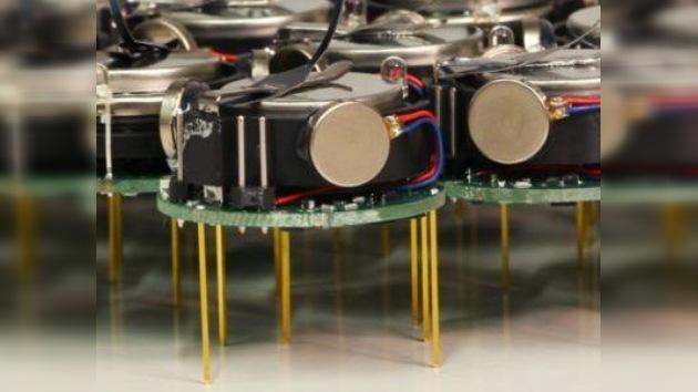 Insectos robots: los nuevos 'juguetes' espías estadounidenses