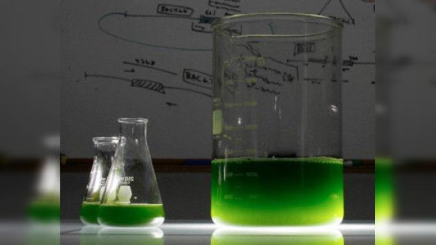 Científicos mexicanos transforman la basura en combustible
