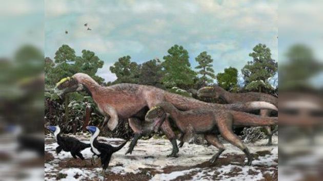 Encuentran los restos del dinosaurio emplumado más grande de la prehistoria