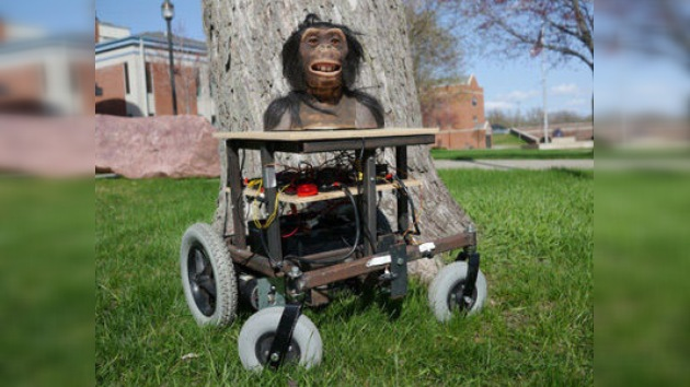Crean un robot que ayudará a establecer una comunicación entre hombres y monos