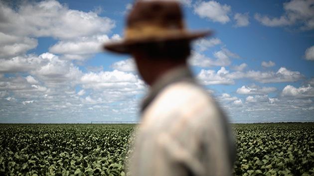 Agricultores de Brasil rechazan los cobros de Monsanto por semillas de soja transgénica