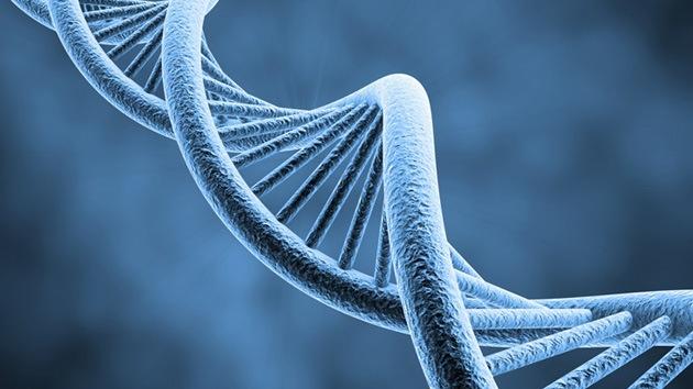 Sensación científica: hallan un segundo código genético en el ADN