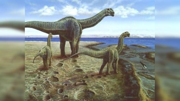 Los dinosaurios migraban para 'buscarse las habichuelas'