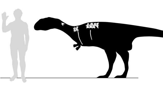 Hallan una nueva especie de dinosaurio carnívoro en Madagascar