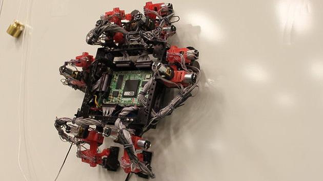 Reptiles e insectos robóticos inundarán el espacio