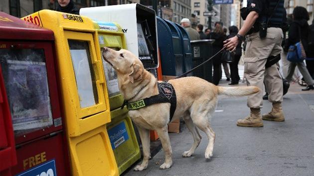 Un dispositivo conseguirá que los perros transmitan mensajes a los humanos