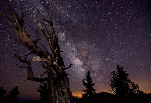 Obras de los mejores fotógrafos astronómicos