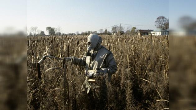 Chernóbyl y Fukushima, similitudes y diferencias. Parte IV: Consecuencias