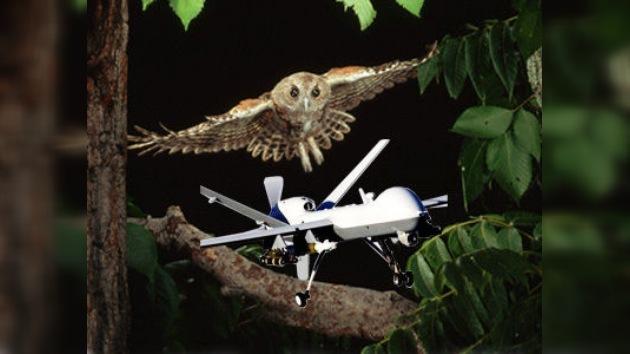 Desarrollan un avión drone capaz de volar como un pájaro
