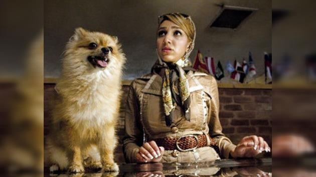 El perro, enemigo del hombre en Irán