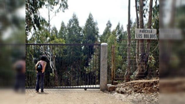 Encuentran una plantación de marihuana en una parcela de Pinochet en Chile
