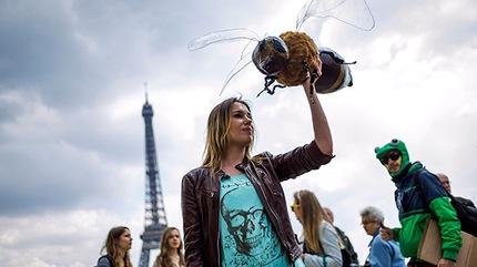 Marchas contra Monsanto por todo el mundo el 25 de Mayo 2013 6f4f70b6d25d24cc55f8a019cedde88d_article430bw