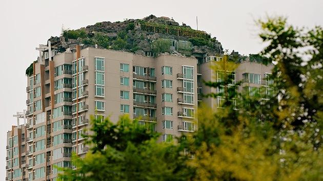 Un chino se sube a la chepa de un rascacielos y se monta una villa con rocas y jardines