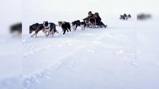 Yakutia abre la temporada de giras turísticas en trineos tirados por perros