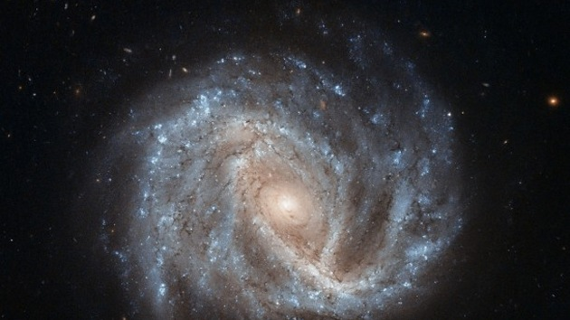 El Hubble capta una imagen de supernova que muestra eco de luz