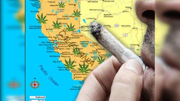 California votará la legalización del consumo recreativo de marihuana
