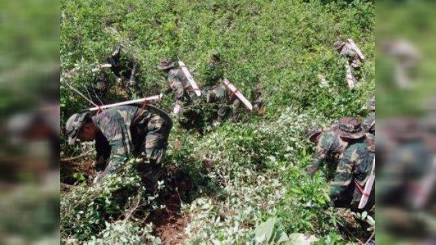 Brasil y EE. UU. ayudarán a Bolivia a localizar por satélite plantaciones ilegales de coca