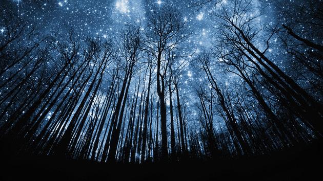 Una espectacular lluvia de estrellas se verá esta noche en