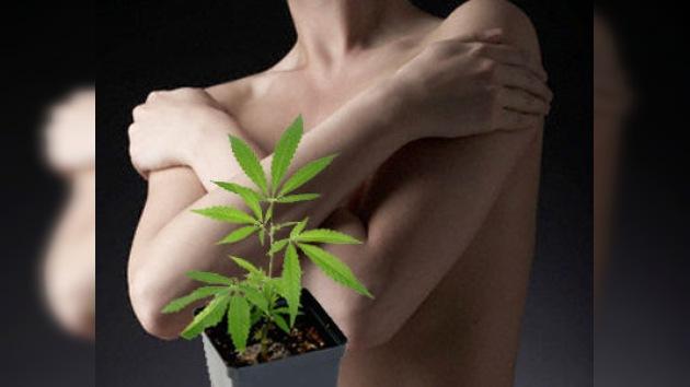 La marihuana podría frenar el cáncer de mama