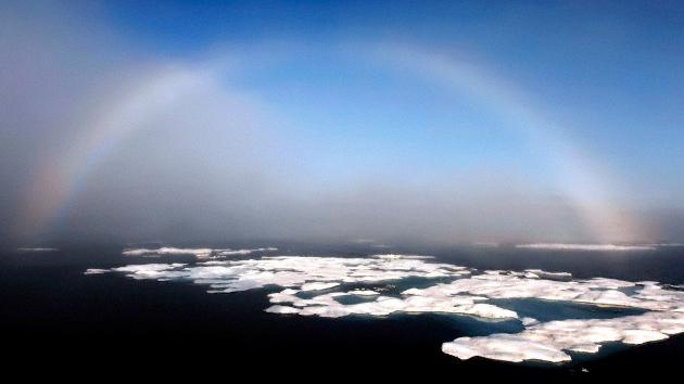 Geleiras do Ártico podem desaparecer dentro de quatro anos