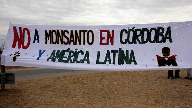 """""""Son ellos o somos nosotros"""": argentinos luchan contra la llegada de Monsanto"""