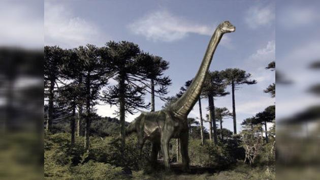 Chile ahora tiene su propio dinosaurio