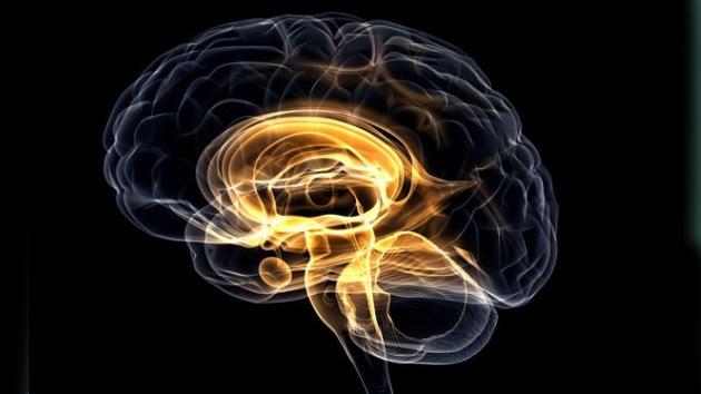 ¿Existirá la vida perfecta?: Los científicos podrían reescribir los recuerdos del cerebro