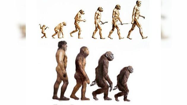 ¿Evolución o involución?: hallazgos de científicos rusos cuestionan la teoría de Darwin