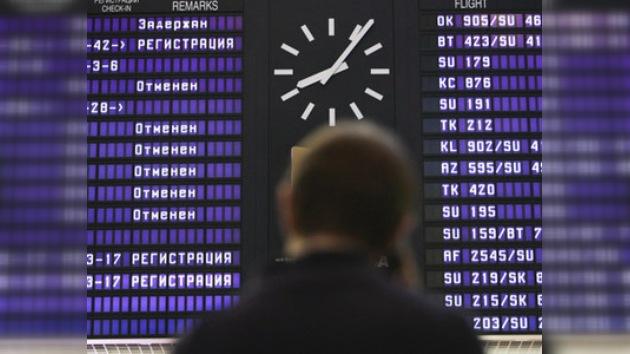 Un ternero paraliza el funcionamiento del principal aeropuerto de Moscú