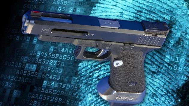 Las armas inteligentes que sólo obedecen a sus dueños, no interesan en EE.UU.