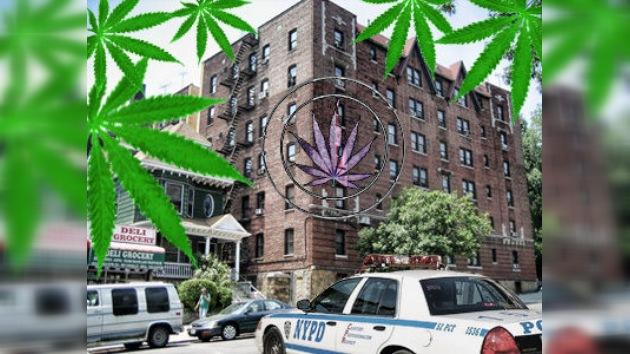 Confiscan cientos de kilogramos de marihuana en el barrio neoyorquino del Bronx