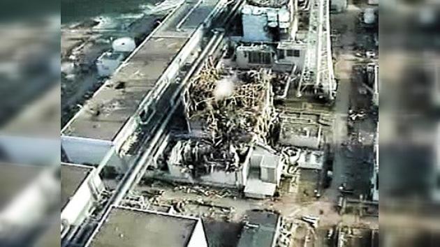 Japoneses combaten radioactividad con minerales absorbentes de radiación