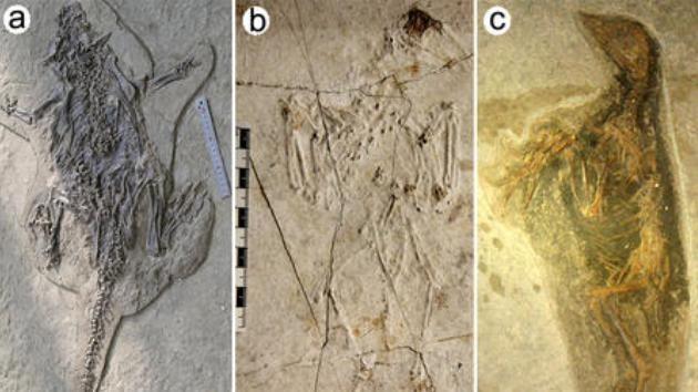 Científicos resuelven el misterio de la 'Pompeya china'