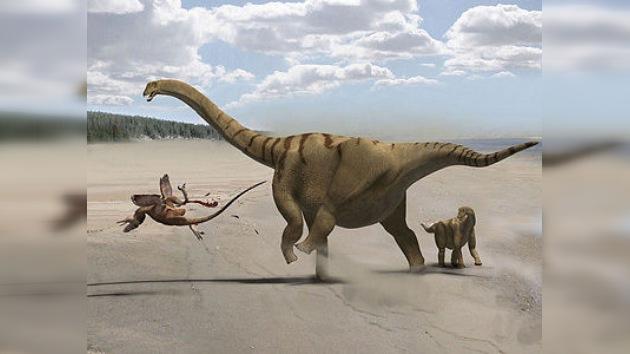 Saurópodos, viejos habitantes del Continente Blanco