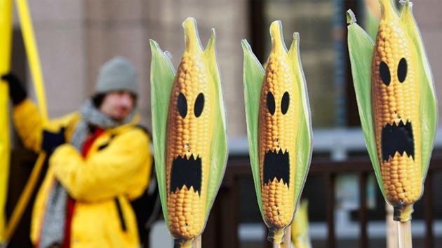 """Diputados rusos: """"Tratemos a los productores de OGM dañinos como a terroristas"""""""