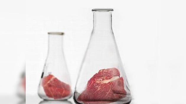 Holandeses logran producir carne 'de probeta'
