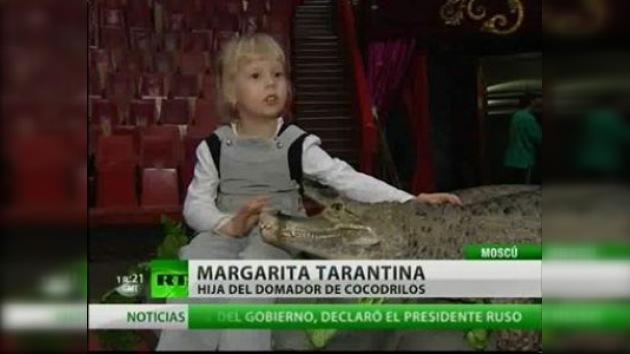 Cocodrilos como animales domésticos para una niña rusa