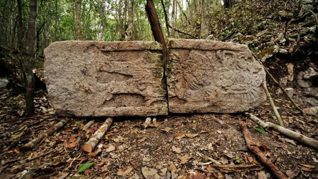 Encuentran 19 estelas en la recientemente descubierta ciudadela maya de Chactún