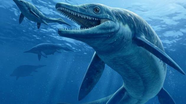 Hallan los restos de un cazador acuático gigante de hace 250 millones de años