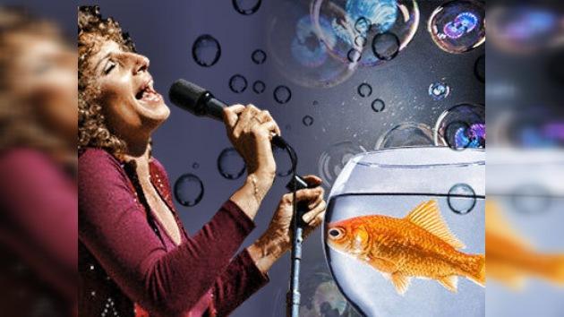 Una americana enseña a su pez a tocar 'Moon River' en el glockenspiel