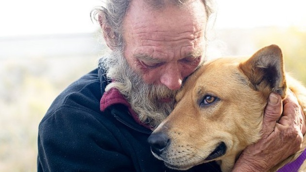 'Milagro de Navidad': Las donaciones salvan la vida del perro atropellado de un indigente