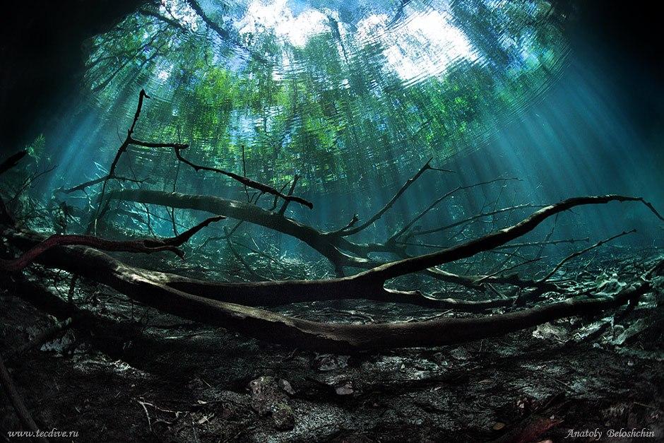 Video y fotos de un misterioso 39 r o 39 bajo el mar rt for Imagenes de hoteles bajo el agua
