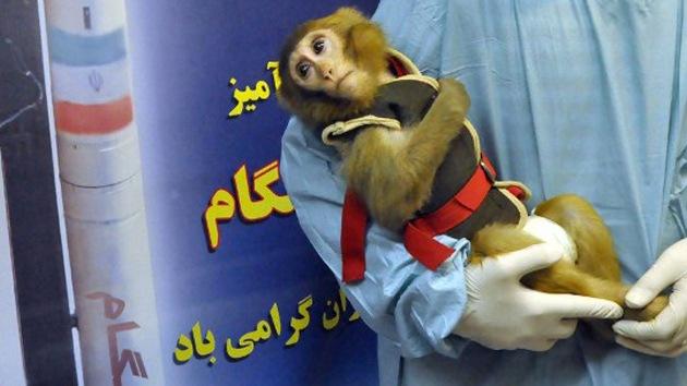Irán anuncia el exitoso lanzamiento de otra cápsula espacial con un mono a bordo